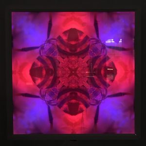 Photo of bee mandala lightbox with the LEDs glowing red and blue in the dark.